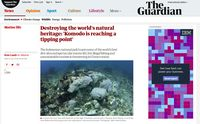 Screenshot The Guardian