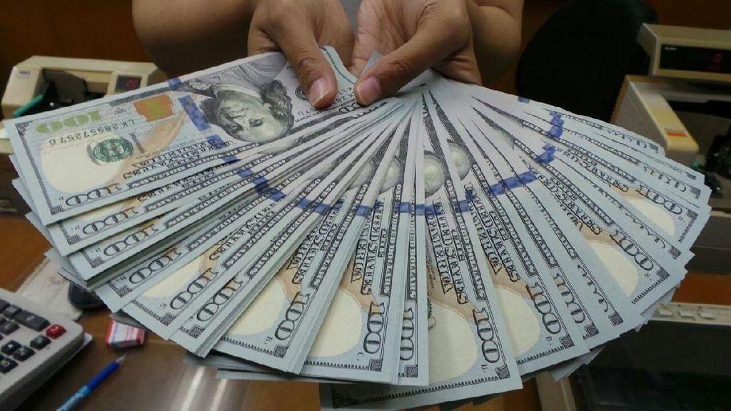Dolar AS Tembus Rp 14.555, Darmin: Enggak Ada Bahayanya