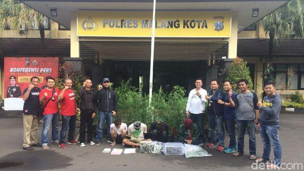 Polres Malang Kota bongkar penanam ganja/