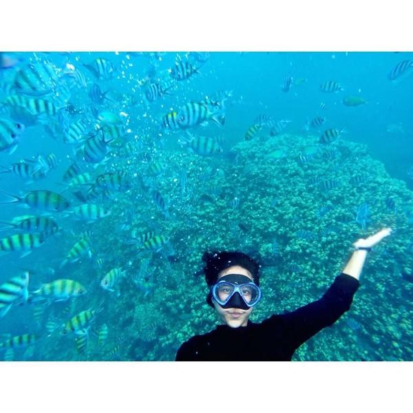 Pesona alam bawah laut Indonesia juga memesona Tania. Keindahan Pulau Menjangan jadi pilihan Tania untuk melepas penat. (Instagram/@taniawidjaya)