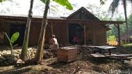 Stunting Trenggalek, Rumah Sulikah Dibuatkan MCK dan Plesterisasi