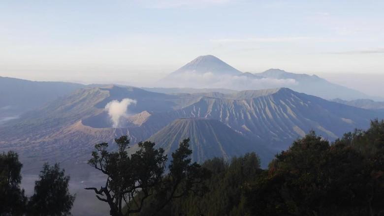 Foto: Suasana pagi Gunung Bromo dilihat dari Penanjakan, Jawa Timur (Kurnia/detikTravel)