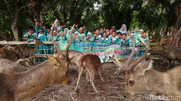 Wisata edukasi di Hutan Maliran Blitar/