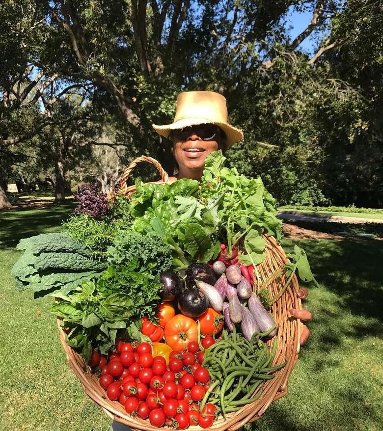 Ini membuatku sangat senang, tutur pembawa acara ternama dunia ini. Mengunakan tagar #harvestday, Oprah baru saja memetik tomat, labu, terung dan aneka sayuran hijau. Foto: Instagram oprah
