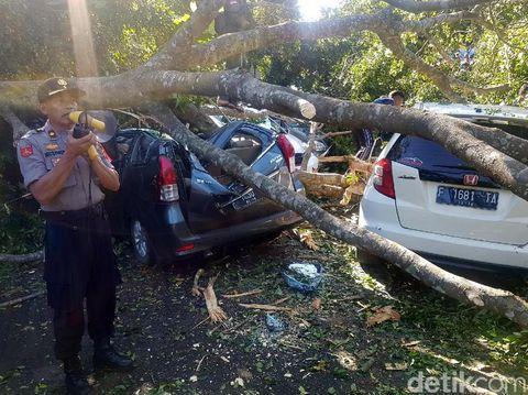 Pohon Tumbang Timpa Belasan Mobil di RSUD Sukabumi Berusia 100 Tahun