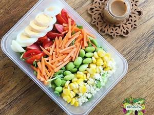 Sarapan Salad Sayur yang Sehat dan Segar Pilihan Netizen