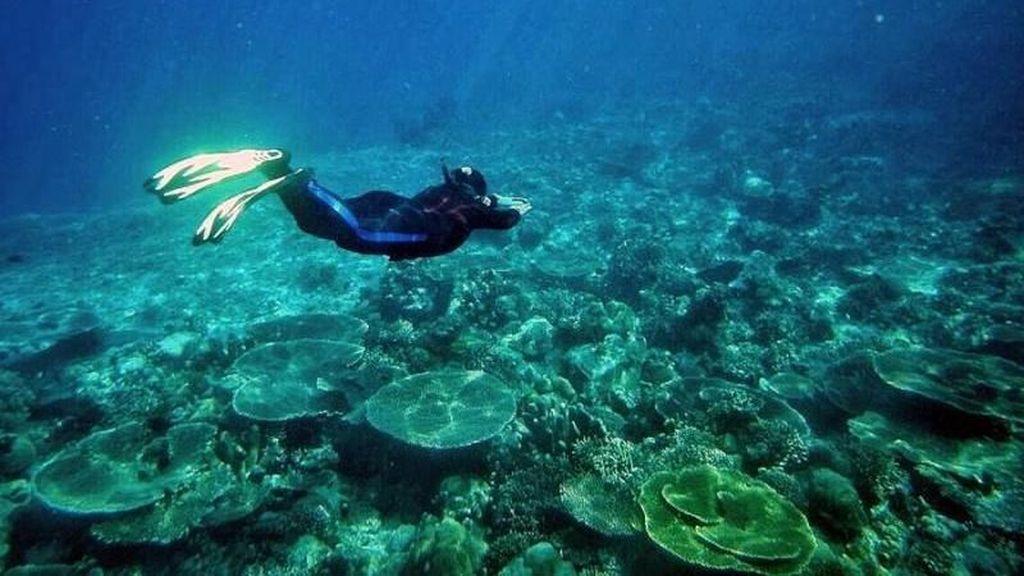 Maluku Utara Memang Bikin Lupa Daratan