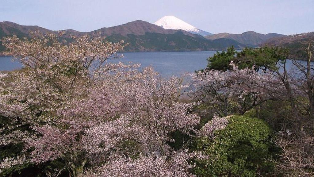 Empat Musim dan Sejarah Hakone