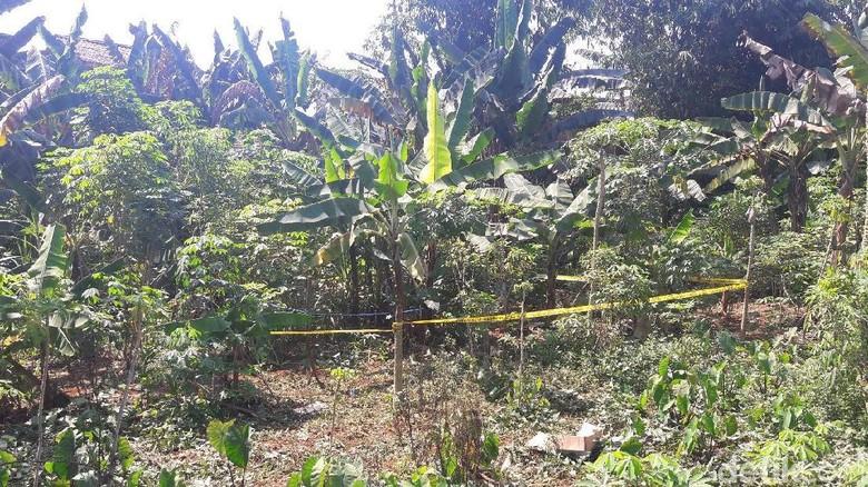 Mayat Bocah Dalam Karung Ditemukan Di Kebun Singkong Bogor