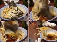 Viral! Ikan yang Sudah Dimasak Ini Kembali Hidup dan Loncat dari Piring