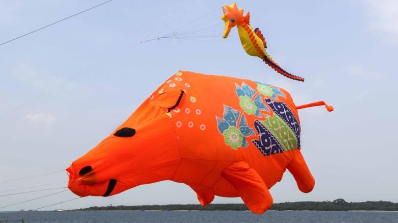 Foto: (Rhino Kites Festival)