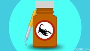 Selain Racun Kalajengking, Ini Racun Hewan Lainnya yang Bisa Jadi Obat