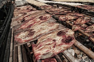 Melihat Pengolahan Kulit Ikan Pari di Muara Angke