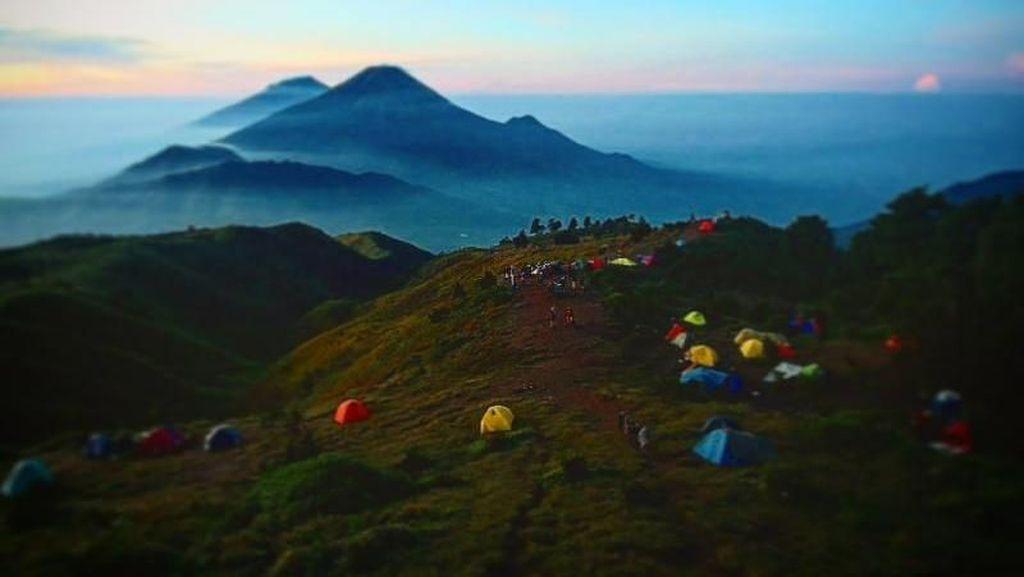 Antara Gunung Prau, Sumbing dan Sindoro