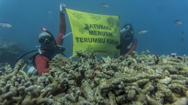 Aktivis lingkungan memprotes lalu lintas kapal tongkang batu bara yang merusak terumbu karang di Taman Nasional Karimun Jawa.