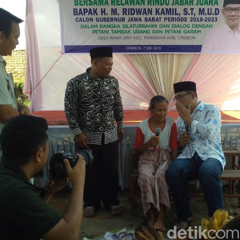 Jurus Ridwan Kamil Berdayakan Petambak Udang dan Garam Cirebon