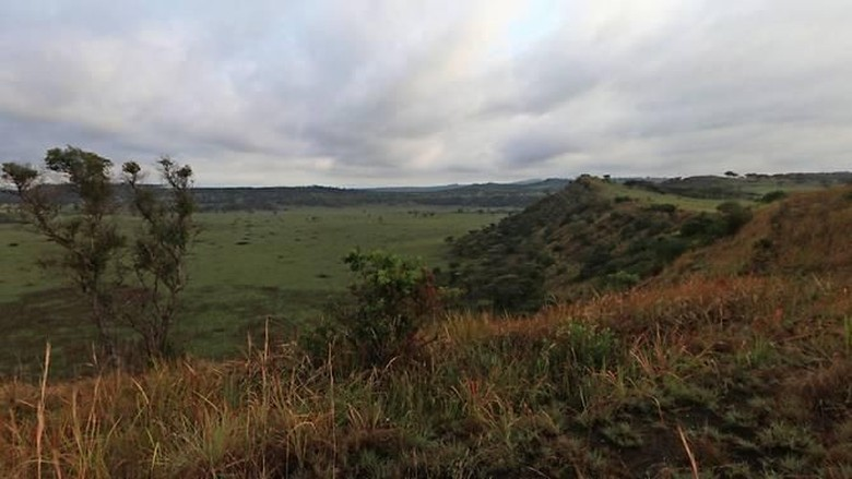Taman Nasional Queen Elizabeth di Uganda (Google Street View via Channel News Asia)