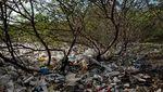 Potret Kehidupan Warga Filipina Hidup dalam Sampah