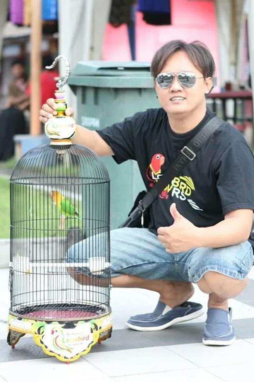 Kisah Lovebird Burung Primadona Yang Sampai Jadi Maskawin 100 Rupiah Dara