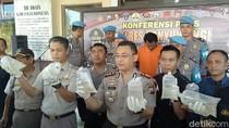 Baby Lobster Senilai Rp 1,5 Miliar Diamankan Polisi Banyuwangi