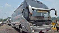 Bus Premium untuk Kelas Ekonomi Layani Rute Sumatera-Jawa