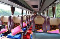Interior bus premium ekonomi