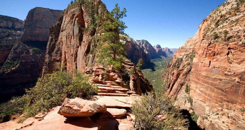 Angels Landing berlokasi di Zion National Park, salah satu taman nasional di Negara Bagian Utah, Amerika Serikat. Inilah jalur trekking sepanjang 8 km (utah.com)