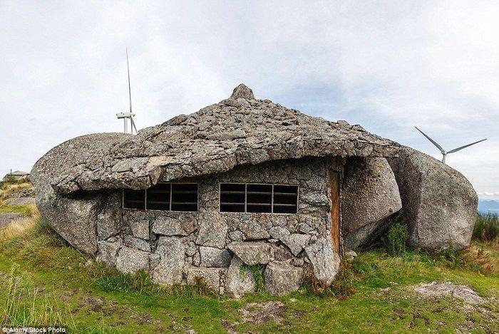 Rumah ini diperuntukkan kegiatan wisatawan yang bisa membuat siapa saja berimajinasi hidup di zaman prasejarah. Istimewa/dailymail.