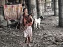 Prabowo Sebut Kemiskinan Naik 50%, BPS: Ngomong Harus Pakai Data