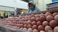Harga Telur Ayam Tinggi, Mentan Minta Satgas Pangan Cek Kartel