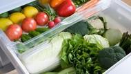 Ini Caranya Menyimpan Sayuran Supaya Lebih Awet Segarnya