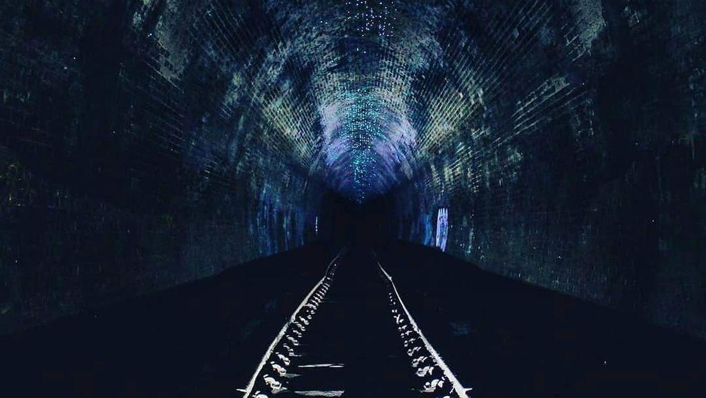 Bagai Langit Malam, Terowongan Ini Bercahaya Biru Karena Cacing