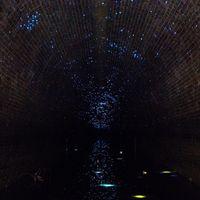 Kini terowongan ini jadi destinasi menarik di Australia (indeliblemistakes_/Instagram)