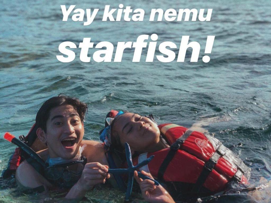 Mengapa Tidak Boleh Angkat Bintang Laut dari Air?