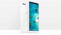 R1, salah satu ponsel buatan Smartisan.