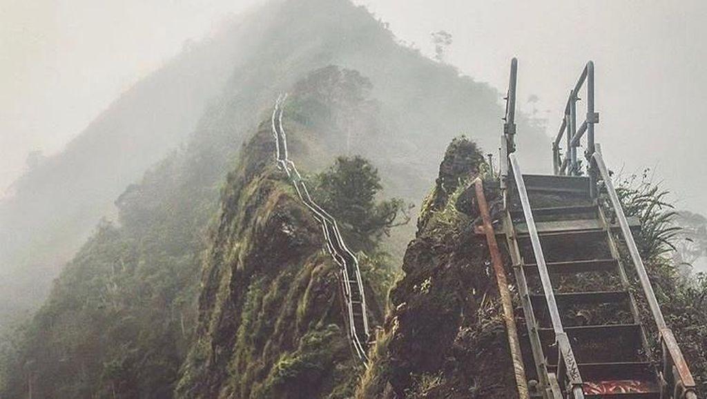 Foto: Tangga Menuju Surga di Hawaii