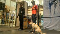 Sisir Mal Kokas, Polisi Pastikan Tak Ada Benda Mencurigakan