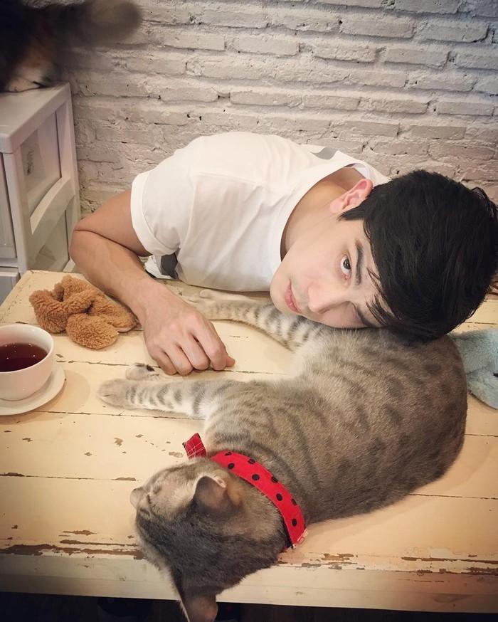 Aktor film I Fine.. Thank You.. Love You ini dikenal sebagai pencinta kucing. Ini pose Sunny saat minum teh sambil tiduran di badan kucingnya. Gemes ya! Foto: Instagram sunny_suwanmethanont