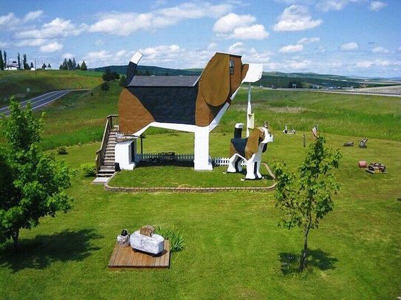 Hotel ini bernama Dog Bark Park dan berada di Kota Idaho, Amerika Serikat. (californian.life/Instagram)