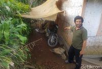 Kisah Goci Terpaksa Begadang Saat Macan Ngumpet di Kolong Rumah