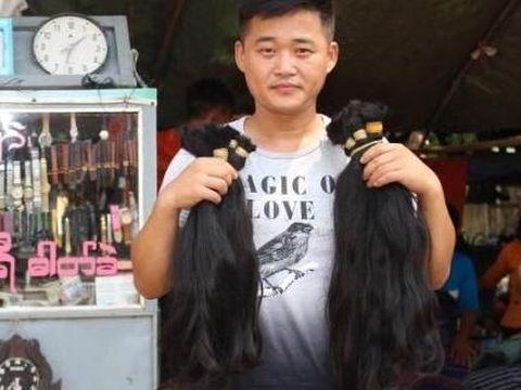 Wamita berambut halus