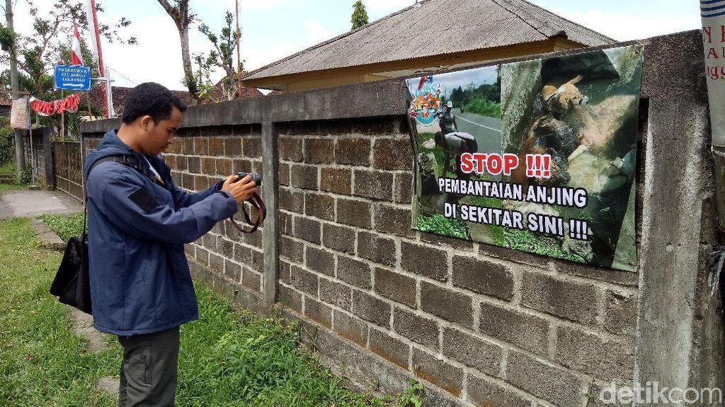 Ini Selokan Tempat Eksekusi Anjing di Bangli