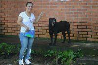 Lihat Aksi Pintar Anjing yang Ganti Uang Pakai Daun untuk Beli Biskuit
