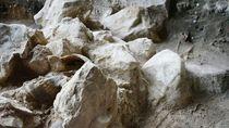 Penemuan Kerangka Manusia 3.000 Tahun di Aceh, Ada Periuk Bekal Kubur