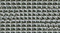Stereogram sebenarnya bukanlah hal baru, tebak gambar ini sudah cukup populer sejak dulu namun tetap seru untuk dijawab. Kamu bisa memecahkan semua jawabannya?