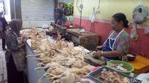 Harga Daging Ayam di Lamongan Tembus Rp 70 Ribu/Kg