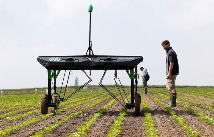 Sebuah perusahaan Start up asal Swiss bernama ecoRobotix mengembangkan sebuah Artificial Intelligent yang dapat mendeteksi jenis tanah dan karakteristik tanah suatu lahan untuk meminimalisir kegagalan panen. Denis Balibouse/Reuters.
