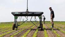 Menyambut Masa Depan Pertanian
