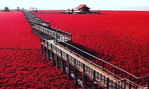 Saat berubah jadi merah, pantai ini jadi buruan wisatawan untuk berfoto. (Instagram)