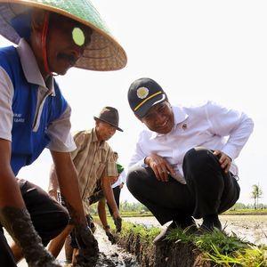 Strategi Kementan dalam Mensejahterakan Petani